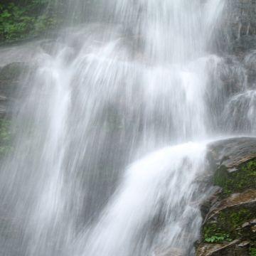 Darjeeling-Pelling-Gangtok 3